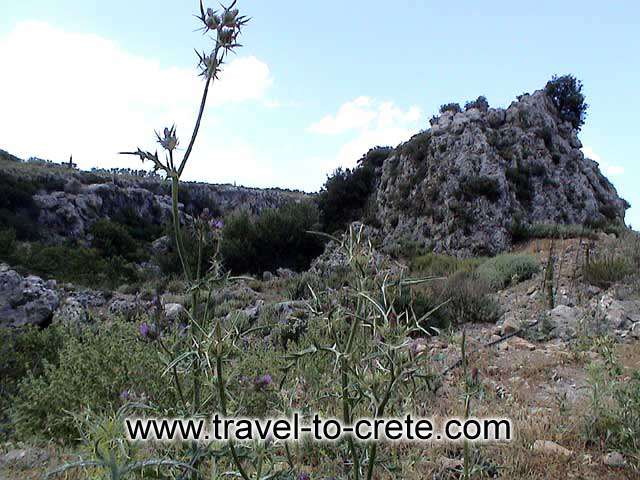ASITIS - The hill above Agios Pavlos