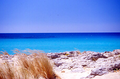 Falassarna - Falassarna beach near Chania town,Crete island.