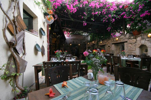 The well restaurant is wonderful and very romantic, the flowers grew around the trees. CLICK TO ENLARGE