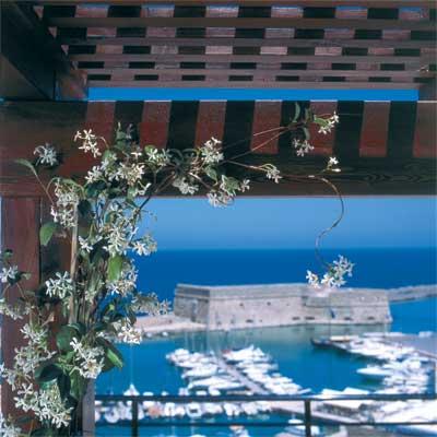 LATO BOUTIQUE HOTEL IN  15, Epimenidou Str.