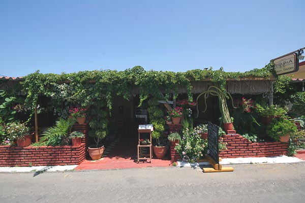 PERASMA FAMILY TAVERN IN  Maleme